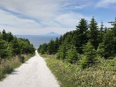 これが「白い道」宗谷丘陵フットパスコース。ホタテの貝殻を砕いて、敷き詰めてあります。