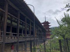 五重塔が神社に???と現代人は思いますが。明治以前は神社とお寺は神仏習合で別々ではなかったので決して珍しくないということ。日光もそうですよね。