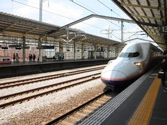 高崎には11時過ぎ、ゆっくり歩いて約1時間ほどで到着。 そして12時過ぎの新幹線「MAXたにがわ」で大宮へ。