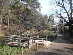 宝來山古墳からは田園調布に出て帰ることにしました. 田園調布に出る途中の宝來公園の池.