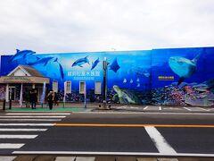 着きました! 越前松島水族館! わくわく(≧▽≦)