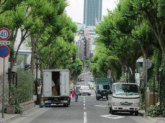 """北野坂を上り切ったところ、横の通り、""""北野通り""""からの眺望~、  正面の高層ビルは神戸市役所、高さ132m・地上30階のランドマークタワー、 これほど税金を投入して建てる必要があったのか疑問ですね?…。"""
