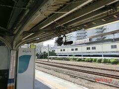 新宿から高尾までは中央線で、高尾から以西が中央本線なのですね。 帰りに甲斐大泉駅で時刻表を見ていてわかりました。
