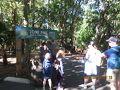 わくわく^^ 1927年開園、世界初のコアラ園、 「ローンパイン コアラ サンクチュアリー」 サンクチュアリー(Sanctuary)というのは 「聖なる場所」「聖域」を指し、 そこから転じて「禁漁区」「保護区域」と意味付けされるそう。