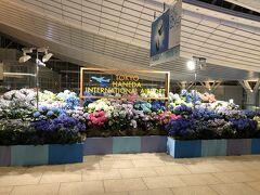 今回は羽田空港から出発です 羽田の国際線って、四季折々の飾りがあって好き