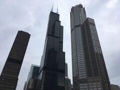 そして、こちら(真ん中)がシカゴで一番高いビル・ウィリスタワー。  443mで、1973年の完成から1998年にクアラルンプールのペトロナスツインタワーができるまでの約25年間、世界一の高さを誇っていたビル。  もともとはシアーズタワーという名称だったのが、経営者が変わって2009年に名前も替えられたらしく、シカゴで育ったガイドさん的には、まだウィリスという名前がしっくりこないらしい。