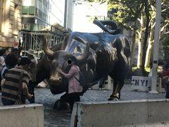 ニューヨーク証券取引所近くにあるチャージング・ブル 撫でると金運がUPすると噂があるのでみんな並んでいます~ 私たちは車窓から!