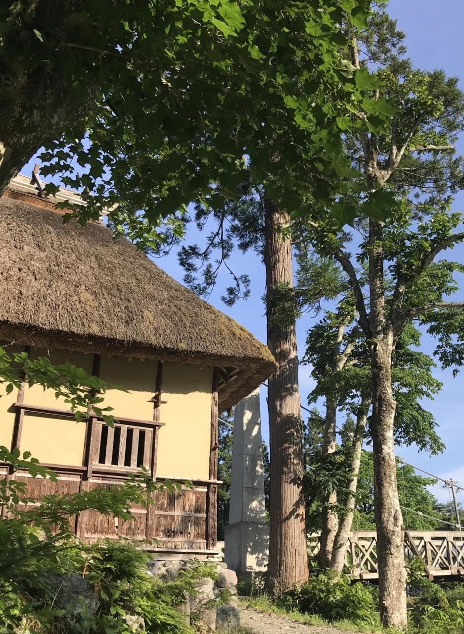吊橋の手前には藁葺屋根の売店がありました。 売店も藁葺なので、景色に馴染んでいますw