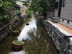 さて、萩旧市街を東南に疾走します。階段状にかくかく曲がっている水路、藍場川に沿って。行きも帰りも水路沿いだから、道に迷うこと無し! 上流に行くほど水が澄んでいて、鯉もいっぱい泳いでいました。