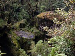テ・アナウへの帰路に訪れたのは、The Chasm. 原生林と奇岩の景観を楽しみます。