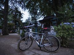 それからしばらくは紫陽花巡りを休業し、いつものように夕方頃に自転車でりんりんロード(筑波自転車道)を気ままに走っていました。 この季節の夕方サイクリングは最高に気持ちいいですよね(虫の特攻を除いて)。 そして念のためカメラと小型三脚もリュックの中に忍ばせたが、家を出る時点ではまだなにを撮るのか決めってませんでした。