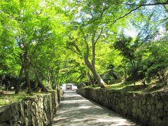 2019年6月25日 火曜日 AM10:07 http://www.uji-koushouji.jp/index.html   (公式HP) 興聖寺 参道  評価3.5