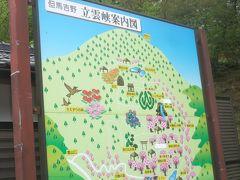 今回は時間の都合で、山城の竹田城跡へは登らず、天空の城・竹田城跡の見える立雲峡へと行った。  巨岩、奇岩が点在する立雲峡は、海抜757mの朝来山中腹にあり、天空の城・竹田城跡の展望台として有名な場所。ここはまた樹齢300年以上の桜が群生し、但馬吉野といわれている桜の名所でもある。私たちが訪れたのは4月末で、ここの桜は終わっていたのが残念だった。