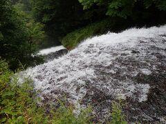 川幅は広く滔々と流れる水 見ていると吸い込まれそうに
