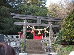 2019年初の温泉旅行。 まずは初詣。  八幡宮来宮神社にきました。 こじんまりと仕手いるけど、静かで厳かで居心地の良い神社です。