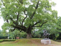 「 雨は降る降る 人馬(陣羽)は濡れる 越すに越されぬ 田原坂」  ここ田原坂では、熊本城に救援に行こうとする政府軍とこれを防ごうとする薩軍が17日間にわたり激戦を繰り広げられました。  現在は田原坂一帯は公園として整備されています。 薩軍の少年兵の銅像。 後ろの大樹は西南戦争を見ていた木です。