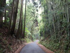 ここが田原坂。 舗装はされていますが、道の広さなどは当時と変わりません。 坂を上ってくる政府軍兵士を両脇のがけの上の林から薩摩軍は銃撃したり、日本刀でせめて来たりして、政府軍は苦しめられました。