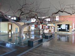 駅に隣接する施設は「波岡交流センターあぴねす」、  地域の魅力を発信する交流や活動の場とありました~、 暫く休憩をさせて頂きます。