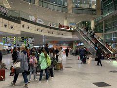 モスクワ ドモジェドヴォ空港 (DME)