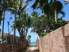 ホールフーズでタクシーを呼んで・・ラニカイビーチへ ビーチに続く小道を覗くだけで期待感が・・ ワクワク(^O^)