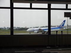 14:00前に伊丹空港に到着。 妙見口駅からだと50分くらいだったかな。