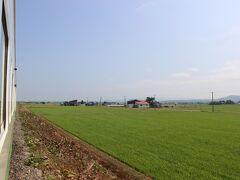 浦臼という駅から終点の新十津川駅までの区間は列車が1日1本になります。 この列車が始発&終電です。  この区間は人家はさらに減り、黄緑の田畑がとても美しく広がります。 意外なことに1日1本のこの列車から、於札内という駅でおばさんが1人降りていきました。 これで地元の方の利用者は0人になったようです。