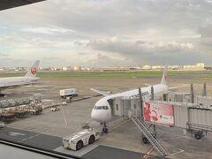 東京は良いお天気になりそうだけれども、この日の予報、奄美大島は大雨。 大丈夫かしら。
