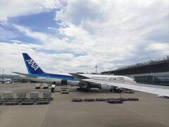 【1回目】5/28  いつもは赤色の航空会社なのですが、突然青色にも乗ってみようという事になり、ANAに搭乗しました。