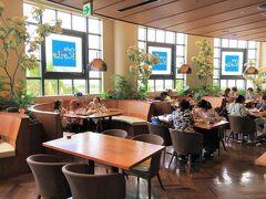 千葉県浦安市舞浜『イクスピアリ』2F【Cafe Kaila】  【カフェ・カイラ】舞浜店の店内の写真。  奥のシーティングエリアに案内していただきました。  ハワイで一番おいしい朝食を出すお店  ハワイでの開業以来地元民に愛され続けているレストランです。 日本2号店になるイクスピアリ店では、人気のパンケーキやワッフル、 オムレツのほか、パスタやサンドウィッチ、さらにはイクスピアリ店 限定メニューなどをお楽しみいただけます。 また、オリジナルグッズもイクスピアリ店限定で販売いたします。