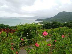 玉取崎展望台。いろんな色のハイビスカスが咲いていてほっんとに綺麗~。ここの近くに住んで毎日散歩に来たい。海にも花にも癒される。個人的にはここの景色が一番好きかな。