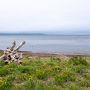 サロマ湖鶴雅リゾートはサロマ湖の東端の湖畔にあり、夕日の名所なんですが天候に恵まれませんでした。 今回、各地で夕日を期待していたのですが、その点ではとても残念でしたね。