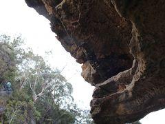 ゴツゴツの岩肌。