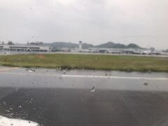 伊丹まではお天気がもっていたけれど、やはり松山空港は予報通りの雨でした。  それもけっこう降っているので、やっぱり下灘に行くのはやめたほうがよさそうです。