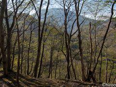日光東照宮から中禅寺湖に向かう途中で、かの日光いろは坂を通りました。