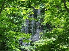 不老の滝  葉っぱが生い茂っていてどこからもちゃんと見えない。 けど、それがいい味出しているのかもしれません。 紅葉の時期はすごいんだろうなぁ。 人もほとんど歩いてなく、静かです。 この滝はバスの車窓からも見えました。