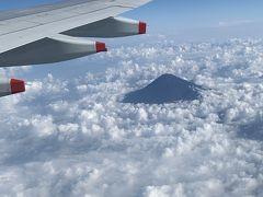 お天気が悪いから富士山が拝めないかなと思ってたけど、無事拝めました。  幸先良いスタート。