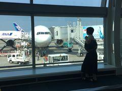 羽田空港到着! こっちも暑い! 夏本番ですね!  お疲れ様でした。 今回もいい旅でした。