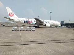 JALのTOKYO2020機 記念に何枚も撮影しました