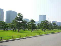 皇居前広場。 松の木々がとても印象的です。