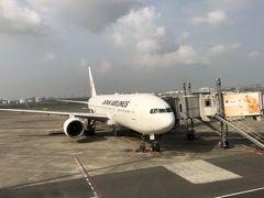 羽田より福岡空港までJAL307です  団体なので搭乗券に名前が入っていないチケットでマイルの加算はできないのですね。8:15出発ですが 7:15集合で早すぎるなあと 思っていたら 手荷物のJALのカウンターは 人海戦術で 夏休みで混んでるためか ちっとも列が進まなかったので 1時間前の集合で良かったなと 思いました 早起きだったけど・・・ ANAは洗濯機みたいなのに預けられるから こんなに混まないのにと ちょっぴり思う  カメラのリチウム電池と スマホ充電池は手荷物でと かなりしっかり確認されるも 持参していたお茶は 未開封と申告しただけで OKでした  菊池渓谷は福岡空港からのほうが 断然近いのですが この夏休み時期に 国体を 熊本、宮崎あたりで行っていて 航空券が取れなかった為らしいです  東京も朝から暑かったけれど 福岡はもっと暑くて蒸し蒸し