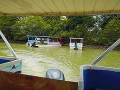 8:00カーニョ・ネグロ野生保護区に向けて出発、10:00頃到着。  ニカラグア国境に近い場所です。低地なのでものすごく暑かったです。  ラグーナ・カーニョ・ネグロという沼があり、そこにボートを出して野生生物を観察しました。