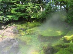 日本庭園 由志園 牡丹と高麗人蔘の里 牡丹の季節は、4月下旬~5月上旬なので、牡丹は咲いてなかったけど (一年中、牡丹の花が見頃を迎える常春の園、牡丹の館を除いて) ドライミストの噴霧