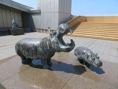 島根県立美術館 展望テラスに、カバの親子がいた