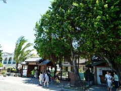 バス停からすぐでした。というか、「安平樹屋」のバス停からのほうが遠いのではないかと。