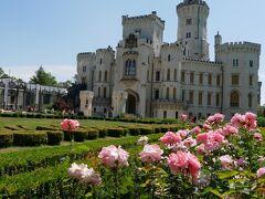 白亜の城と緑とバラがすごく映えます。 お庭はとっても広くて森とつながってて気持ち良い場所です。