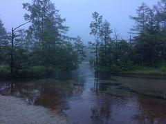 右に行くとすぐ田代池があります。