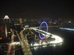 シンガポールフライヤー。 これも料金が高いので、乗れずにいる。