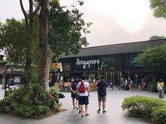 翌朝ホテルをチェックアウトしてタクシー2台に分乗し、シンガポール動物園へ。 チャイナタウンから約20ドルでしたが、ホテルにタクシーを呼んでもらったため別に8ドルかかりました。2台で約56ドル。  トラム付きの入場券+オラウータンとの朝食チケットは日本からvoyaginで購入しておきました。