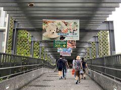 最近日本でも大ブームになっているそうな、タピオカミルクティーを飲みましょうか。