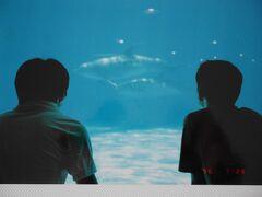 「しながわ水族館」  1996年7月28日 この日も社会人大学の仲間と余暇を過ごした。 そのまま、横浜中華街、鎌倉江ノ島まで足を運んだ。